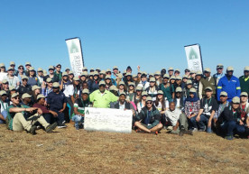 Eastern Cape forestry practices in global spotlight